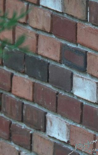 The Bricks that are the Basic Units Davidoff Art Copyright 2014